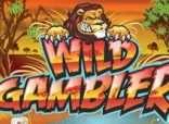 Игровые автоматы Wild Gambler представлять бесплатно